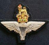 Badge-Para-Regiment-gold--HB