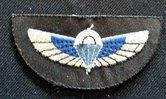 UK--Wing-para--SAS