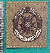 Brevet-Korps-Heeresbergfuhrer-stof