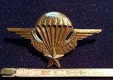 Wing-Frans--NL-gedragen-Oud-model