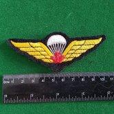 Can.-Para-wing-3