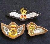 UK--Wing-para--set-van-3