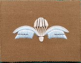 Belgie-Wing-stof-36