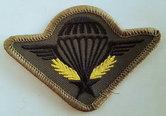 Para-wing-Stof-Frans-gvt-NL-gedragen
