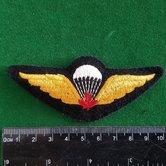Can.-Para-wing-1